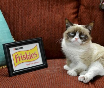 "Grumpy Cat will be the official ""spokescat"" for Friskies brand cat food."