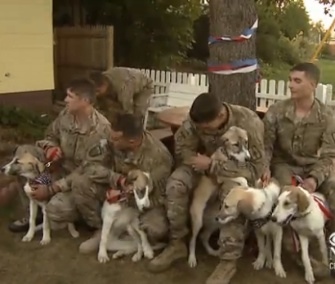 A group of National Guardsmen were reunited with an Afghan dog and her seven puppies on Wednesday.