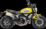1100_yellow