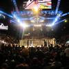 Quintevents-ufc-vip-experience-fight-time