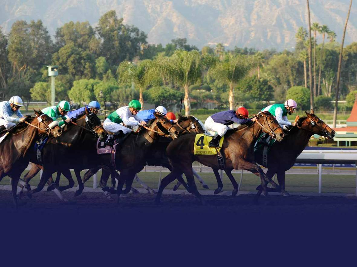 Breeders-cup-santa-anita-park-track-photo-world-championships-quintevents-breeders-cup-experiences-background