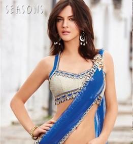 Short-blose-indian-saree-2011-12-400x435