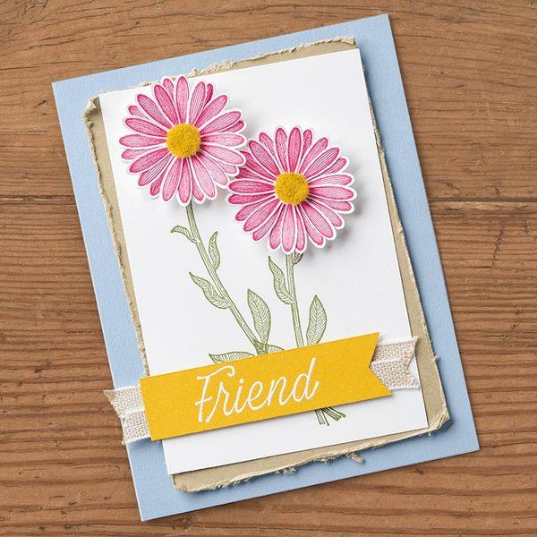 Daisy Lane flowers