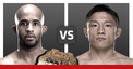 Ufc-home-page-slide-ufc-186-main-card-fight-ufc-vip-experience