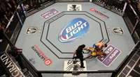UFC-187-4-Reasons-To-See-UFC-VIP-Experience
