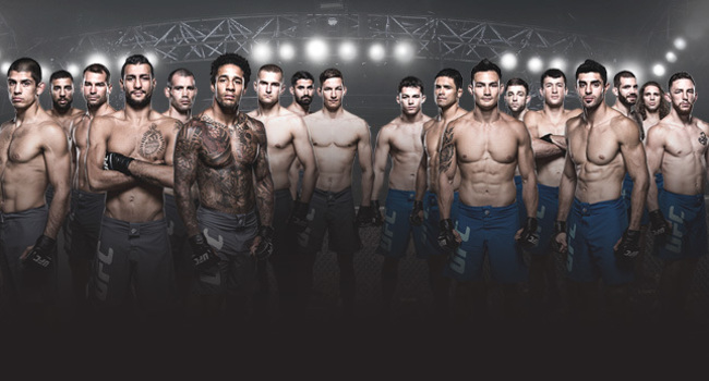 Ufc-home-page-slide-next-ultimate-fighter-ufc-vip-experience