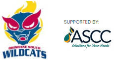 Brisbane South Wildcats Netball