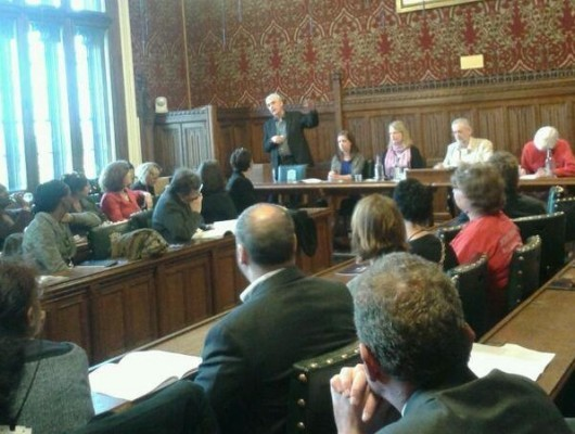 The Bureau's Christo Hird and Maeve McClenaghan present our findings in the House of Commons