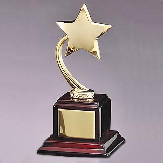 9 in Star Award