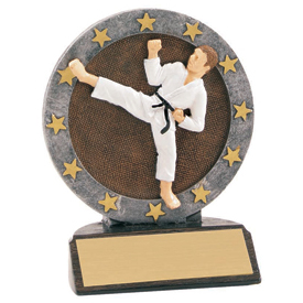 4-1/2 in Full Color Karate Trophy