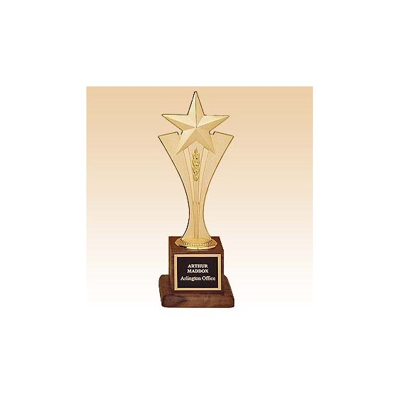 "10"" Rising Star Award w/ Wood Base"