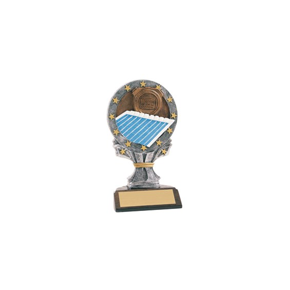 6-1/4 in Full Color Swimming Trophy