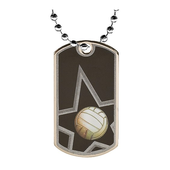 "2"" Volleyball Dog Tag w/ 24"" Chain"