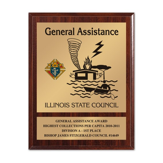 8 in x 10 in General Assistance Award