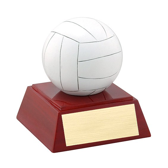 "4"" Full Color Volleyball Theme Resin"