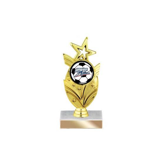 7-1/2 in Star Insert Trophy