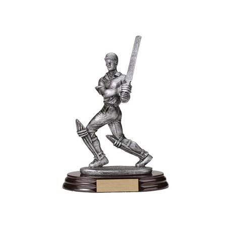 7 in Cricket Resin Trophy