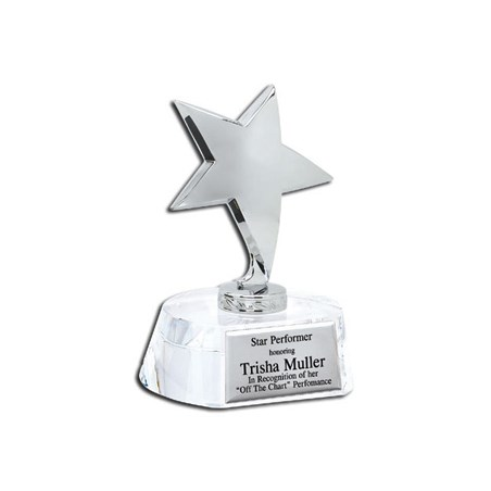 5-3/4 in Crystal Star Award