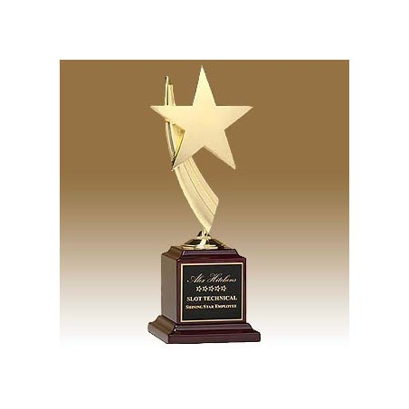 13 in Star Award