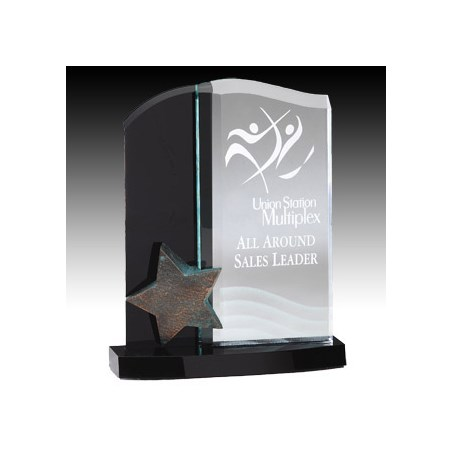 "9-1/2"" Star Tower Acrylic Award"
