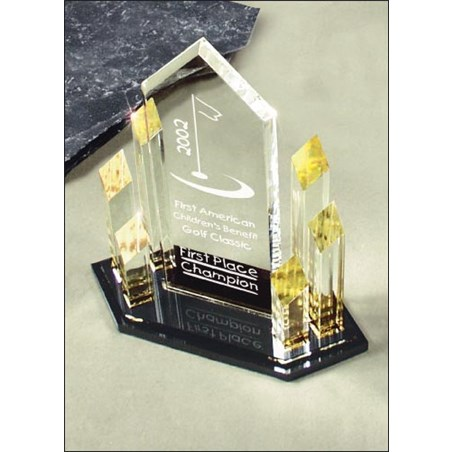 "10-1/2"" Corporate Award"