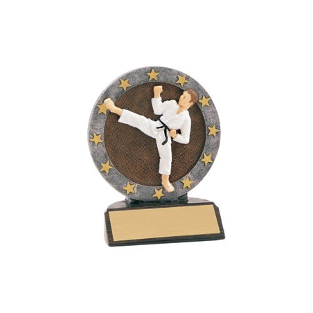 "4-1/2"" Full Color Karate Trophy"