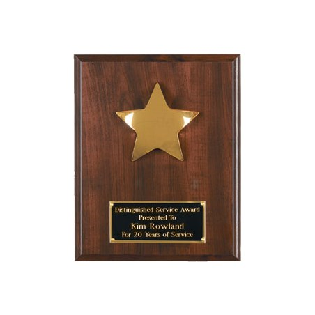 "8"" x 10"" Star Plaque"