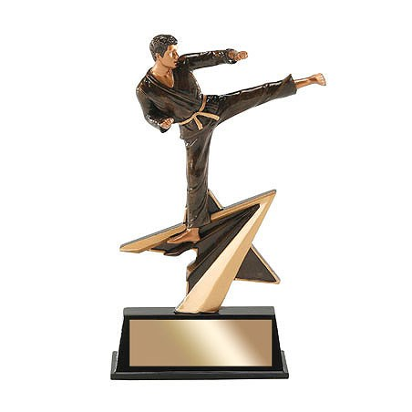 7 in Star Power Karate Resin