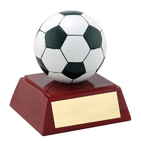 "4"" Full Color Soccer Theme Resin"