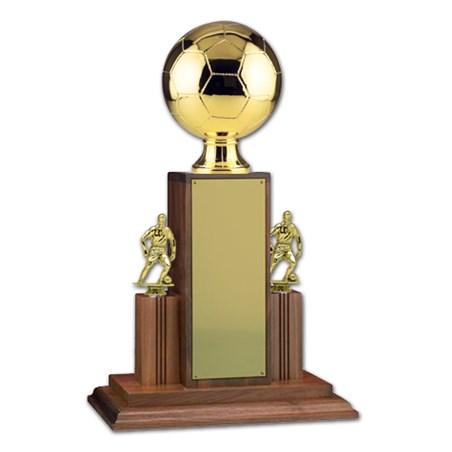 Championship Soccer Trophy