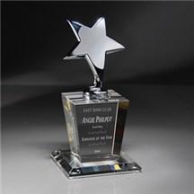 Optic Crystal Star Award