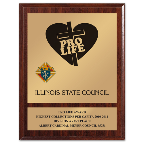 "8"" x 10"" Pro Life Award"