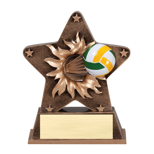 "5 1/4"" Starburst Resin Volleyball Trophy"