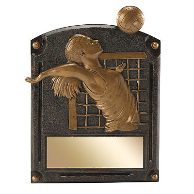 "6"" x 8"" Volleyball Legends of Fame Resin Trophy"