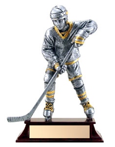6 in Silver Resin Hockey Trophy