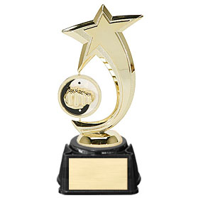 "8"" Karate Shooting Star Spinner Trophy"