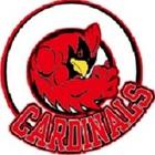 Medium watertown cardinals