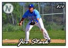Medium joe stark card