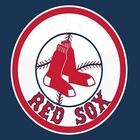Medium rubicon red sox