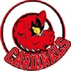 Large watertown cardinals