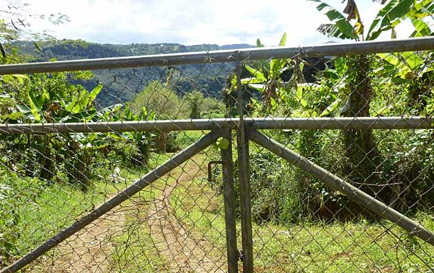 Online Auction: Vacant Residential Land In Barranquitas, PR