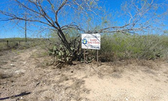 Live Auction: Agricultural Land In Starr County, TX