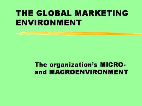 a description of the micro environment of an organisation To lead an organization efficiently we must know where our company is situated, what are the outside influences and the inside ones outer environment (macro environment) there are some factors in the lives of organizations that affect them, but they don't have any control over them (much like in our own life.