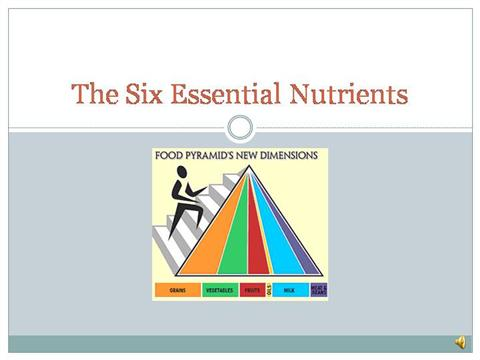 6 Essential Nutrients |authorSTREAM