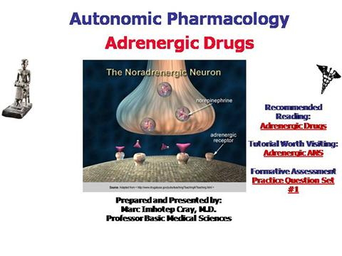 the action of ans related drugs on The following is a list of drugs related to the drugs acting on the autonomic nervous system: animation showing their mechanism mechanisms of action.