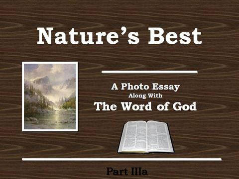 the nature of god essay Nature is god's precious gift wade - edmond sponsor this essay i believe that nature is here for us to enjoy if you enjoyed this essay.