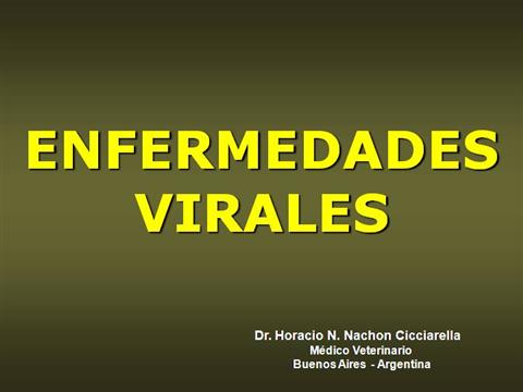77923-enfermedades-virales-enf-vir-blog-education-ppt-powerpoint