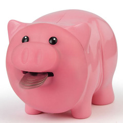 Hungry-piggy-bank-2