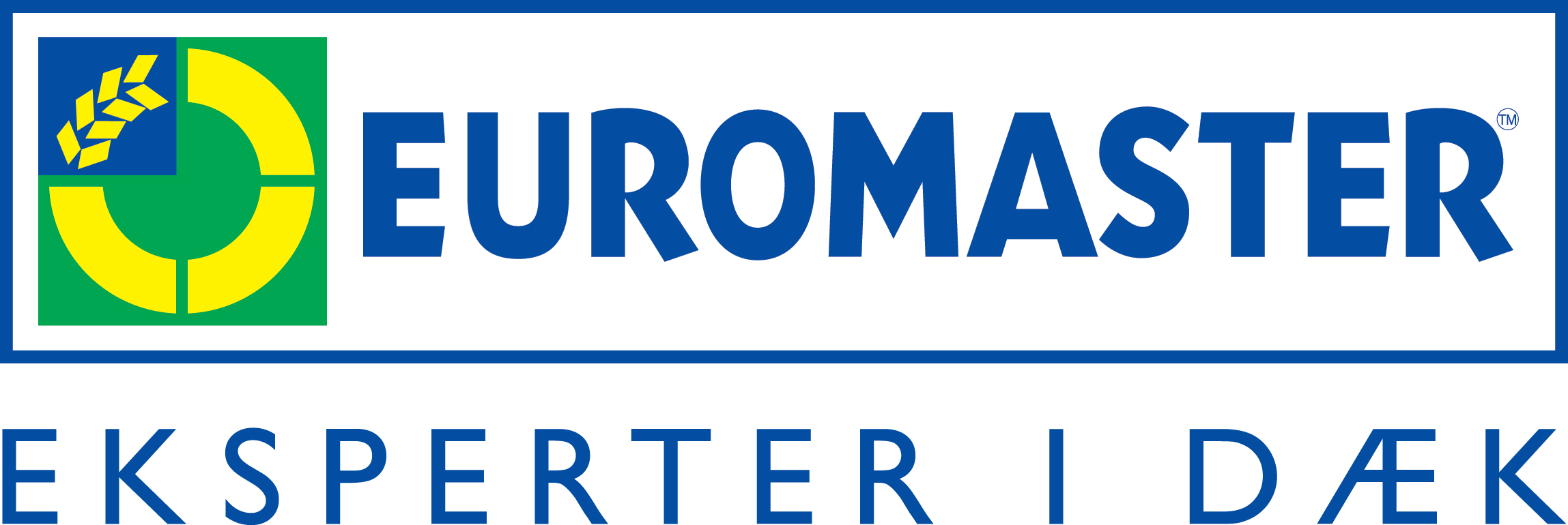 Euromaster-logo_-med-bl%c3%a5-tekst