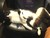 Johnathon Handy